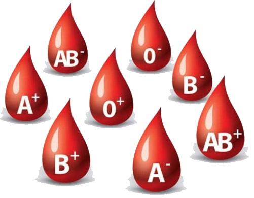dieta dei gruppi sanguigni 0-A-B-AB