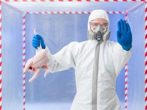 Vaccino contro l'influenza aviaria in un contesto di guerra biologica