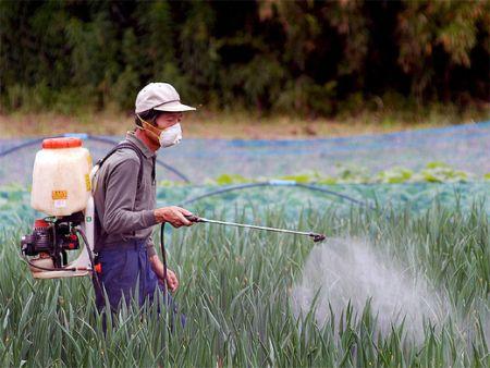 Pesticidi Cibi nocivi additivi chimici