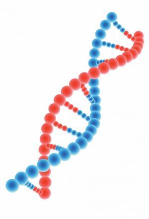 Svelata la struttura elettronica del DNA
