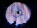 sts75spiral2