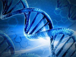 Le nanoparticelle danneggiano il DNA a distanza