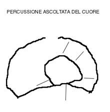 Semeiotica Biofisica 1