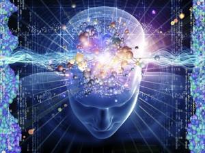 holobrain Psicobiofisica