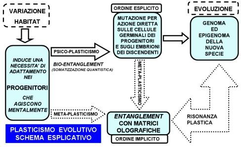 plasticismo_evolutivo_de_rosa