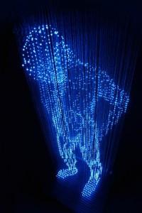 metodo WHITE Holographic Bioresonance - organismi viventi