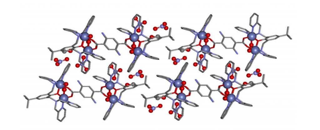 fissazione-ossigeno-cristallo-cobalto-1024x415
