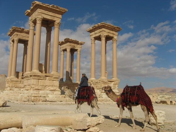 PALMIRA 8