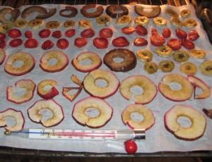 frutta disidratata 5