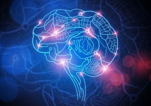 ricerca sul cervello