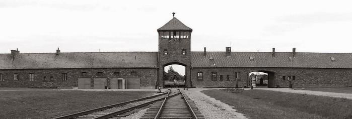 Auschwitz particolare