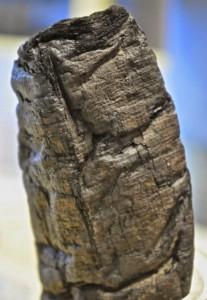 Ingrandimento di un papiro di Ercolano