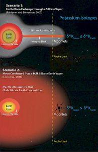 Immagine 2 - Due recenti modelli sulla formazione della Luna, uno permette lo scambio di materiale attraverso un'atmosfera di silicati (in alto) e un altro che crea una sfera attraverso fluidi supercritici (in basso), portano a diverse previsioni per quanto riguarda i rapporti isotopici di potassio presenti nelle rocce lunari e terrestri (a destra). (Illustrazione: Kun Wang)