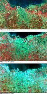 La progressiva espansione urbana di Jakarta dal 1976 (in alto) al 1989 (al centro) al 2004 (in basso). (Cortesia  NASA/GSFC/METI/ERSDAC/JAROS, e U.S./Japan ASTER Science Team)