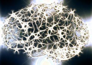nostro cervello