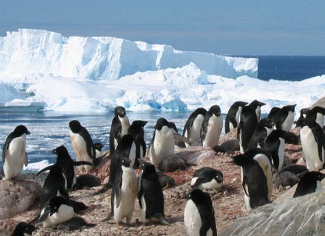L'Antartide svela molti misteri