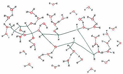 idrogeno e zucchero
