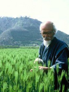 il-padre-dell-agricoltura-naturale-masanobu-fukuoka