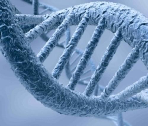 L'Epigenetica e l'autoguarigione a livello cellulare