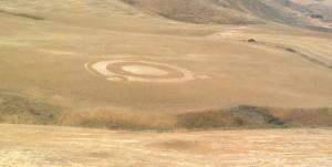 Misteriosi cerchi nel grano tra Enna e Caltanissetta, fobia degli alieni anche in Sicilia
