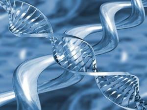 DNA acqua