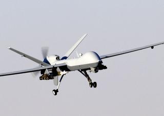 PICCOLI DRONI CRESCONO