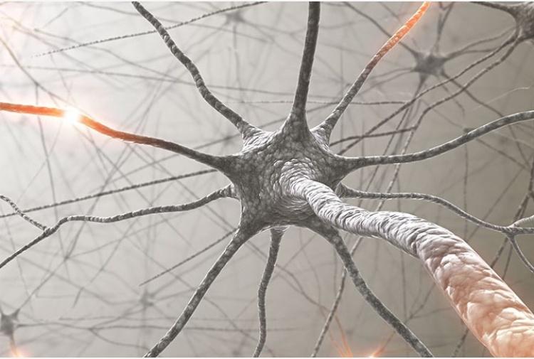 malattie neurologiche SLA