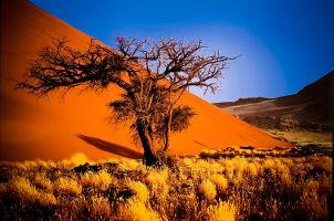 Ohangwena nuova falda acquifera che disseterà la Namibia per 400 anni