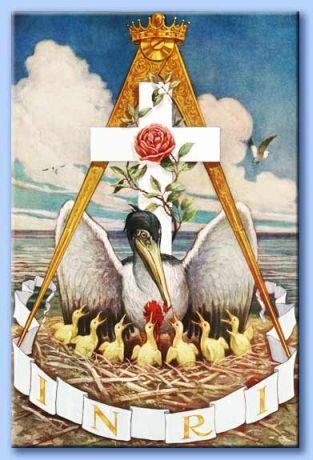 Il Pellicano –Simbolo Rosa + Croce