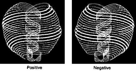 Il mattone fondamentale detto Anu e l'Universo Toroidale