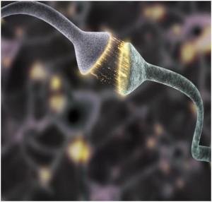 Cellule Psichiche – Le cellule possono comunicare oltre le barriere fisiche