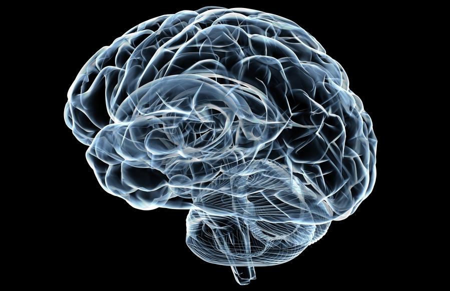 Cannabis Terapeutica per la Prevenzione dell'Epilessia