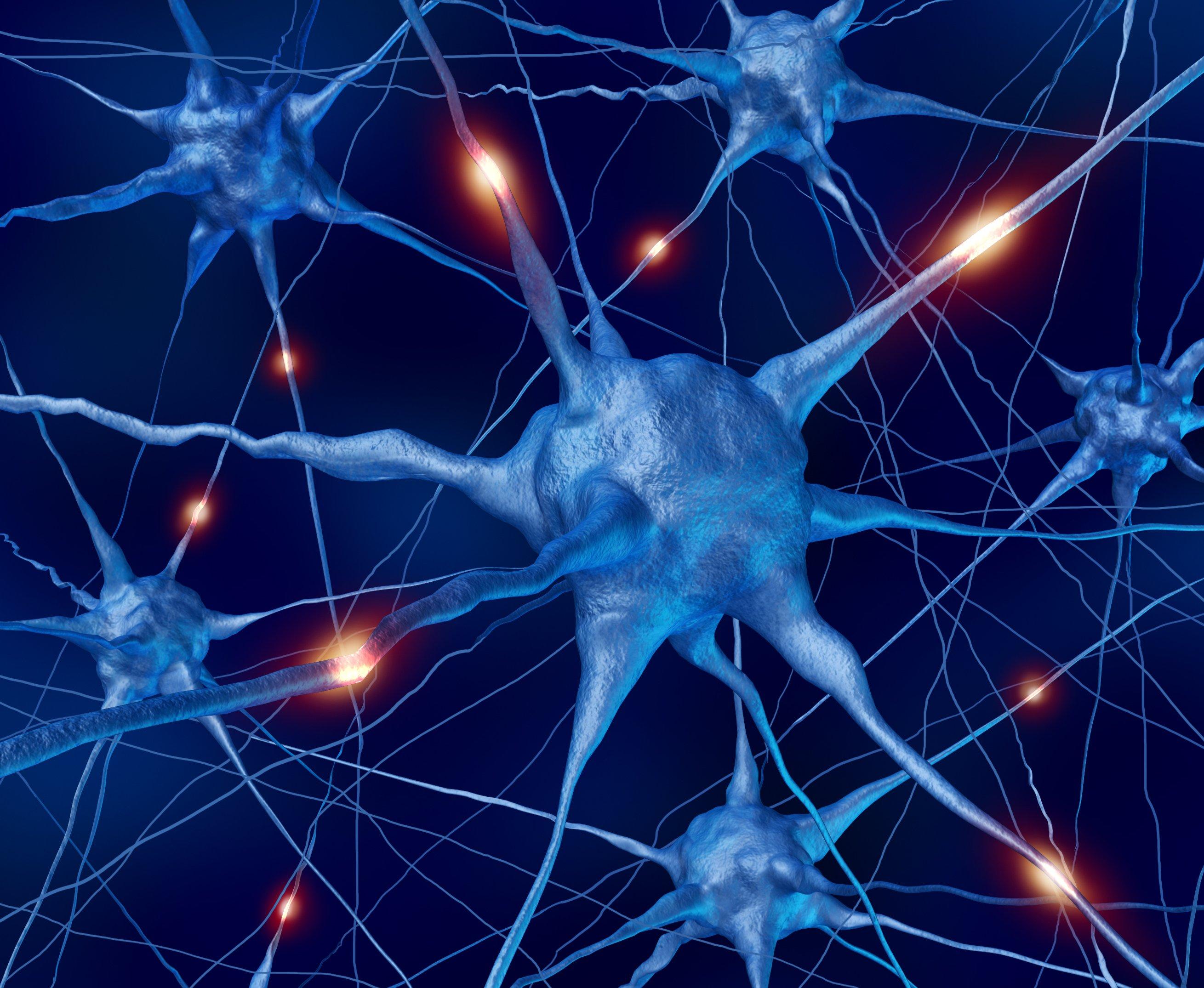 Creati motoneuroni da cellule della pelle