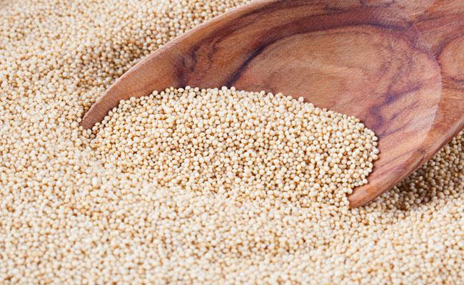 Amaranto, pseudocereale ricco di proteine