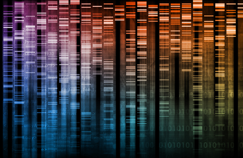 Nuove frontiere dell'editing genetico