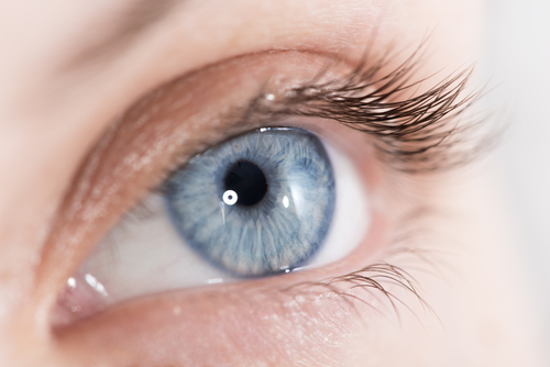 L'occhio umano può vedere l'infrarosso
