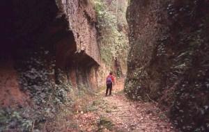 etrusca fosse