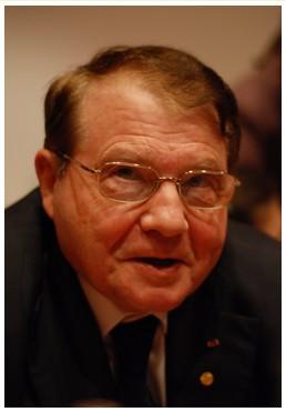 Emilio Del Giudice 5
