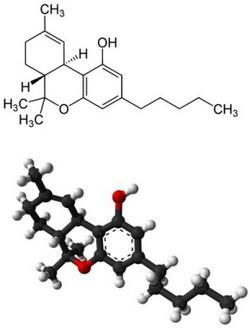 THC - Delta-9-tetraidrocannabinolo