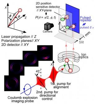 Mai visto le onde quantistiche? Ecco il film
