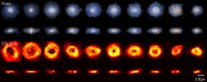 Un campione di 10 galassie massive a disco (viste sia frontalmente che di taglio) selezionate dalla simulazione BlueTides a redshift z=8, così come dovevano apparire 500 milioni di anni dopo il Big Bang secondo i dati di Yu Feng et al. I risultati suggeriscono che le prime galassie massive erano per la maggior parte a forma di disco. Credit: Feng et al. 2015