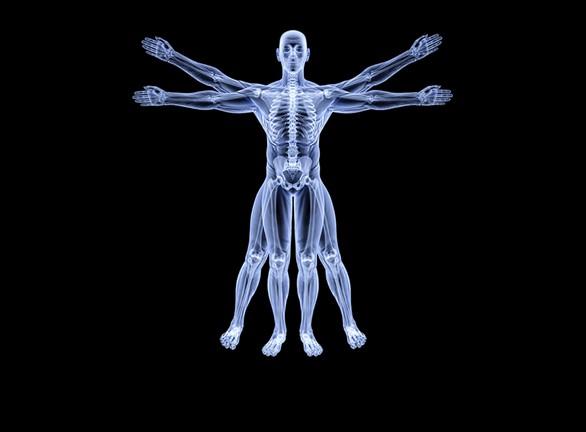 Tossiemia e malattia – La naturale richiesta del corpo di disintossicarsi