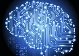 Che cosa rende uniche le cellule del cervello umano? 1