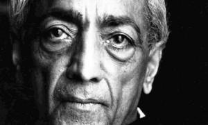 Krishnamurti Albero