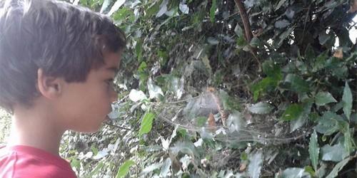 asilo nel bosco 3