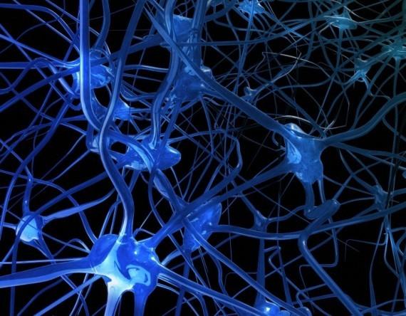 Il dialogo tra le cellule – Congresso di Medicina e Fisica Quantistica