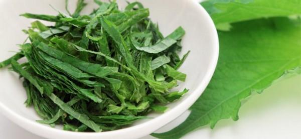 Il shiso è al tempo stesso una pianta officinale, ornamentale e aromatica.