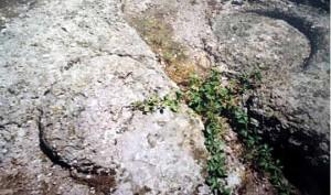 cerchi solari scolpiti nella roccia