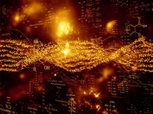 struttura tridimensionale del genoma