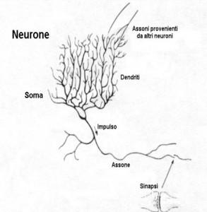 modello neurale di Hopfield